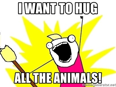 X ALL THE THINGS - i want to Hug all the animals!