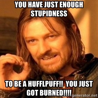 One Does Not Simply - you have just ENOUGH stupidness  to be a hufflpuff!!  you just got burned!!!!
