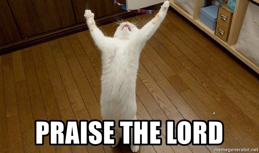 praise the lord cat -  PRAISE THE LORD