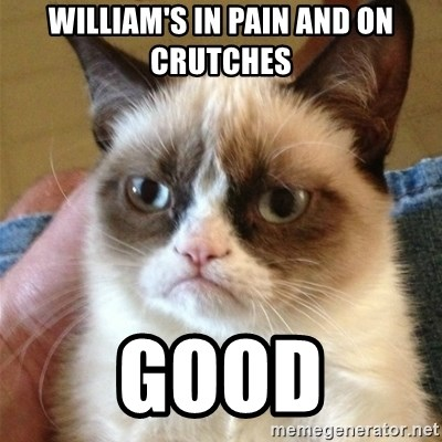 Grumpy Cat  - william's in pain and on crutches Good