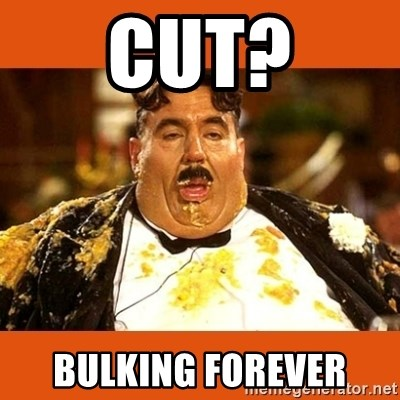 Fat Guy - cut? bulking forever