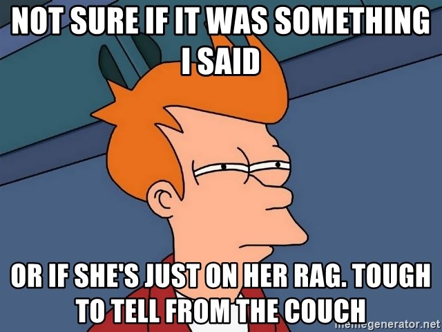 Futurama Fry - Not sure if it was something I said Or if she's just on her rag. tough to tell from the couch