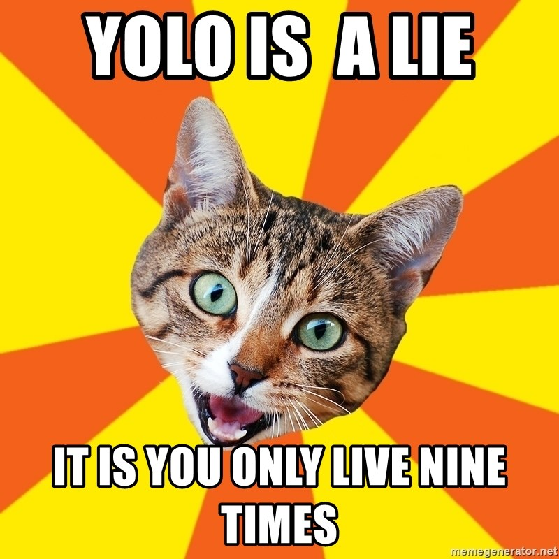 Bad Advice Cat - yolo is  a lie it is you only live nine times
