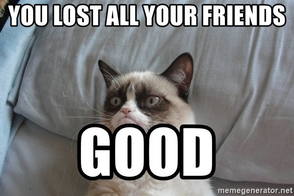 Grumpy cat good - you lost all your friends good