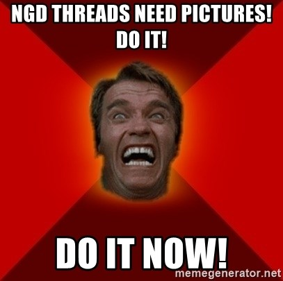 Angry Arnold - NGD THREADs NEED PICTURES! DO IT! DO IT NOW!