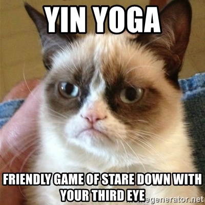 Grumpy Cat  - Yin Yoga Friendly game of stare down with your third eye