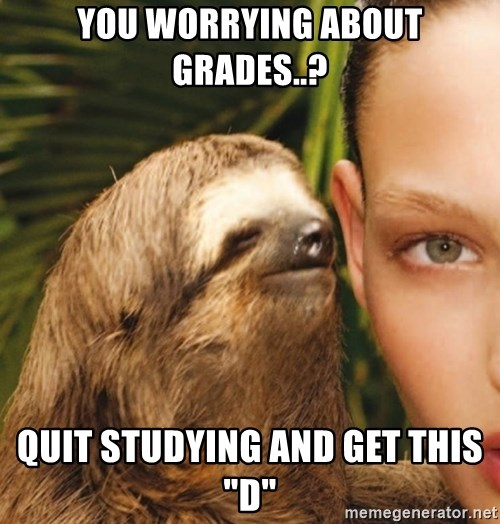 """The Rape Sloth - yOU WORRYING ABOUT GRADES..? quit studying and get this """"d"""""""