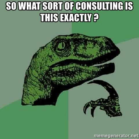 Philosoraptor - so what sort of consulting is this exactly ?