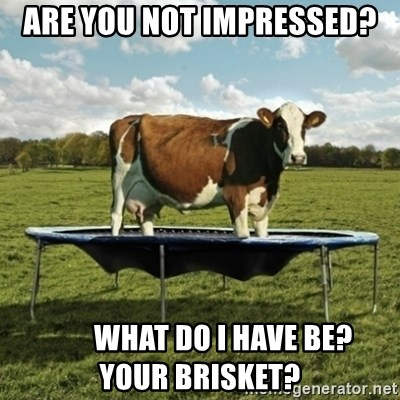 Unimpressionable Cow - are you not impressed?         what do i have be?     your brisket?