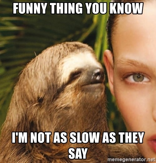 The Rape Sloth - funny thing you know i'm not as slow as they say