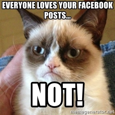 Grumpy Cat  - Everyone loves your Facebook pOsts... Not!
