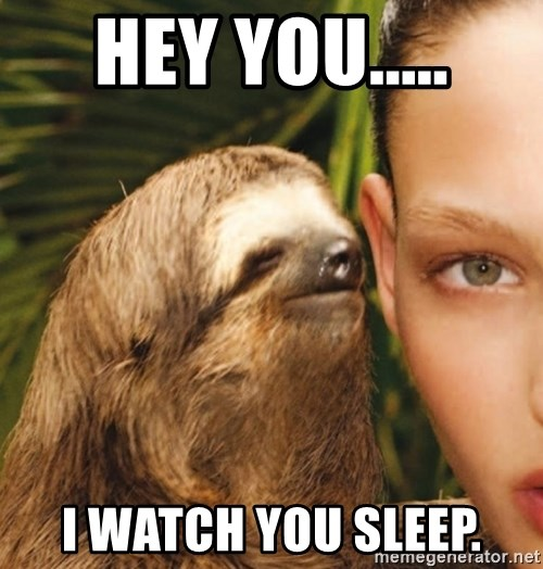 The Rape Sloth - Hey you..... I watch you sleep.