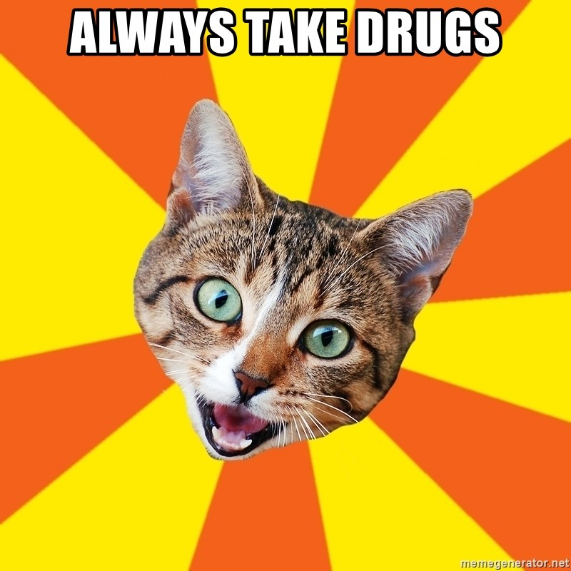 Bad Advice Cat - ALWAYS TAKE DRUGS