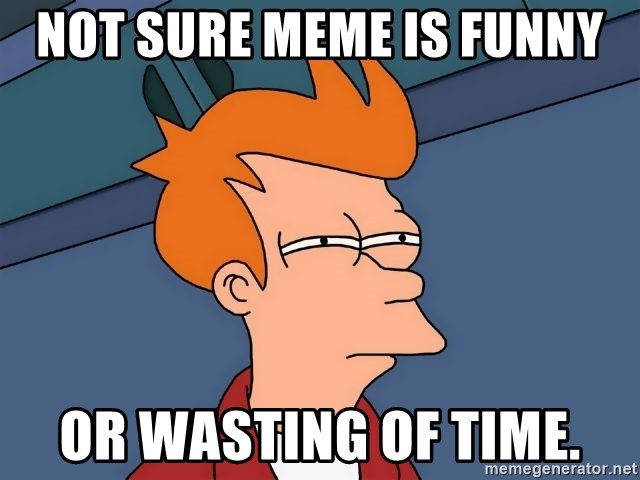 Futurama Fry - not sure meme is funny or wasting of time.