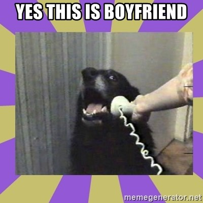 Yes, this is dog! - Yes This is boyfriend