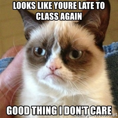 Grumpy Cat  - LOOKS LIKE YOURE LATE TO CLASS AGAIN GOOD THING I DON'T CARE