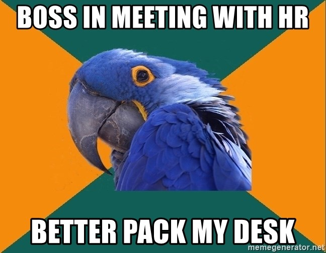 Paranoid Parrot - Boss in meeting with hr better pack my desk