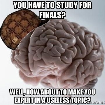 Scumbag Brain - you have to study for finals? well, how about to make you expert in a useless topic?