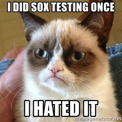 Grumpy Cat  - I DID SOX TESTING ONCE I hatEd it