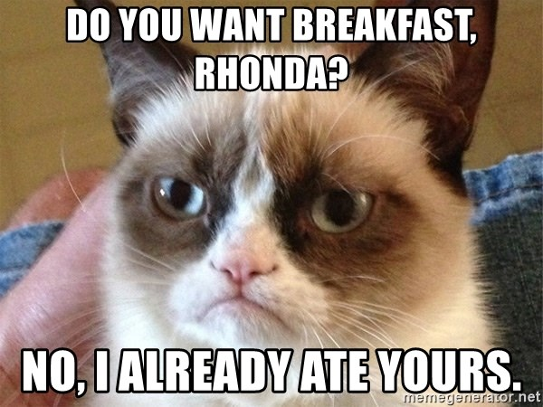 Angry Cat Meme - Do you want breakfast, rhonda? No, I already ate yours.