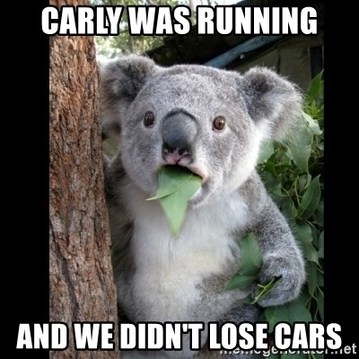 Koala can't believe it - CARLY WAS RUNNING AND WE DIDN'T LOSE CARS