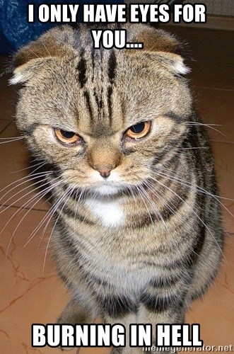 angry cat 2 - i only have eyes for you.... burning in hell