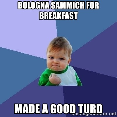 Success Kid - bologna sammich for breakfast made a good turd