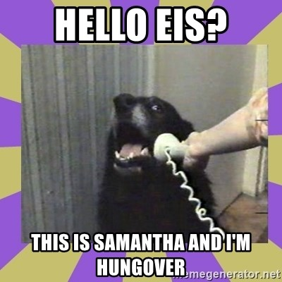 Yes, this is dog! - hello eis? this is samantha and i'm hungover