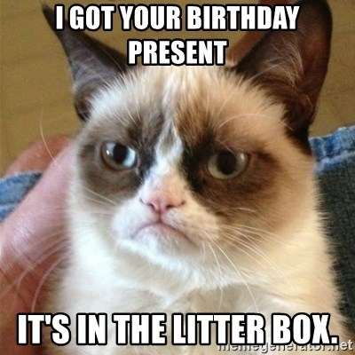 Grumpy Cat  - I GOT YOUR BIRTHDAY PRESENT IT'S IN THE LITTER BOX.