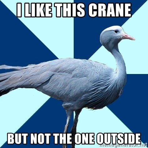 Creative Writing Student Crane - i like this crane but not the one outside