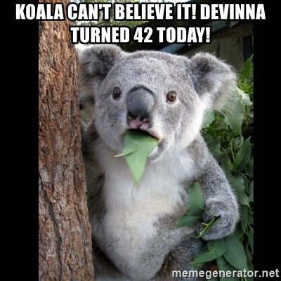 Koala can't believe it - Koala can't believe it! Devinna turned 42 today!