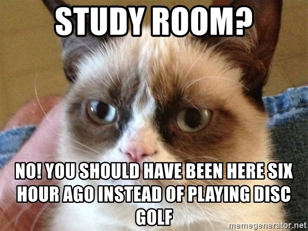 Angry Cat Meme - Study Room? No! you should have been here six hour ago instead of playing disc golf