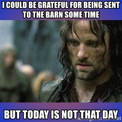 but it is not this day - i could be grateful for being sent to the barn some time BUT TODAY IS NOT THAT DAY