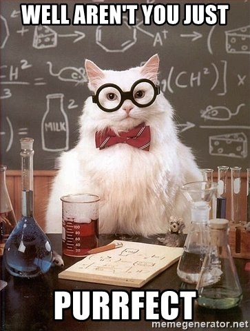 Chemistry Cat - Well aren't you just Purrfect