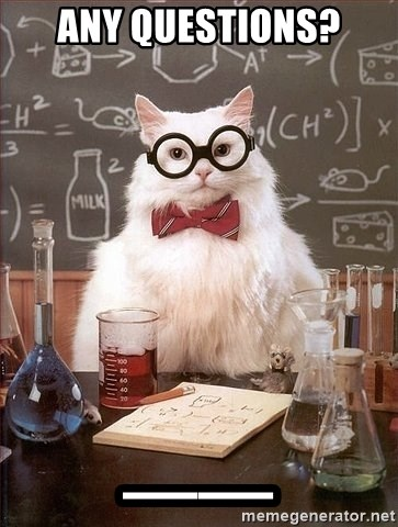 Chemistry Cat - ANY QUESTIONS? __