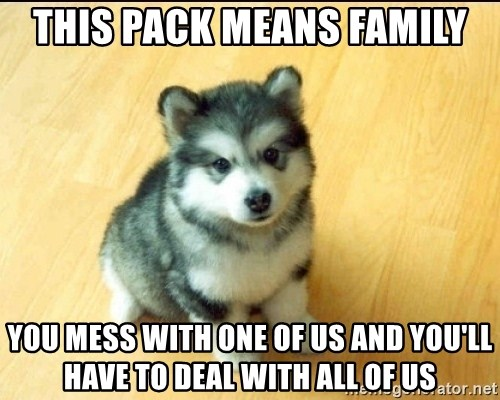 Baby Courage Wolf - this pack means family you mess with one of us and you'll have to deal with all of us