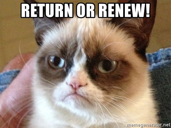 Angry Cat Meme - return or renew!