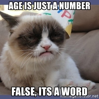 Birthday Grumpy Cat - age is just a number false, its a word