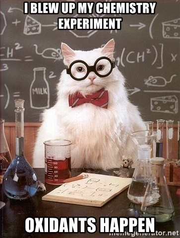 Chemistry Cat - i blew up my chemistry experiment oxidants happen