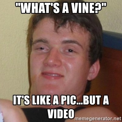 "Really highguy - ""What's a vine?"" It's like a pic...but a video"