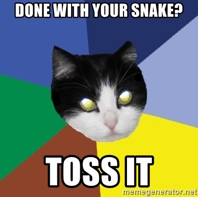 Winnipeg Cat - done with your snake? toss it