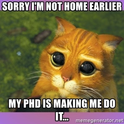 Apologetic Puss In Boots - Sorry I'm not home earlier my phd is making me do it...
