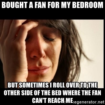 First World Problems - Bought a fan for my bedroom But sometimes i roll over to the other side of the bed where the fan can't reach me
