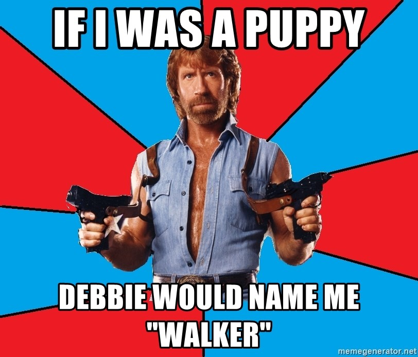 "Chuck Norris  - if i was a puppy debbie would name me ""walker"""