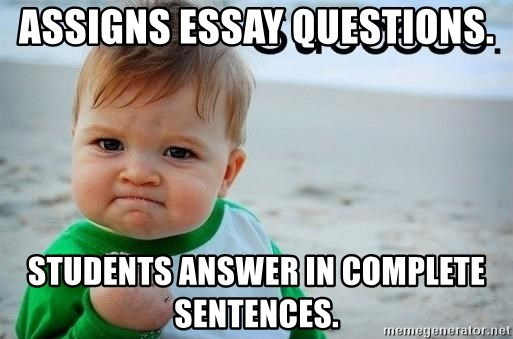 success baby - Assigns essay questions. students answer in complete sentences.