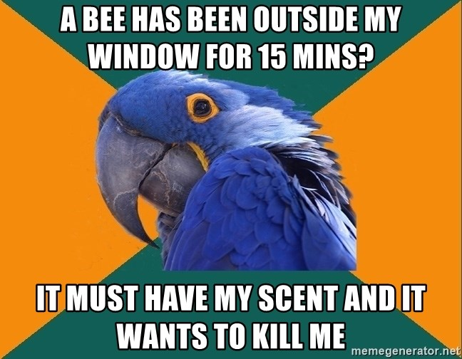 Paranoid Parrot - A Bee has been outside my window for 15 mins? It must have my scent and it wants to kill me