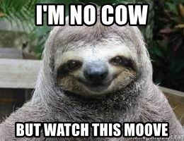 Sexual Sloth - I'M NO COW BUT WATCH THIS MOOVE