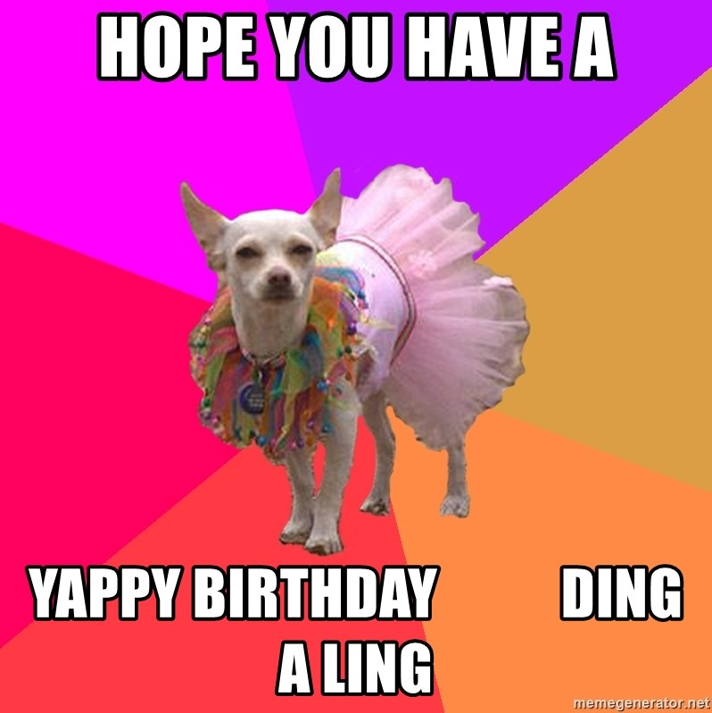 Ballet Chihuahua - Hope you have a Yappy birthday           ding a ling