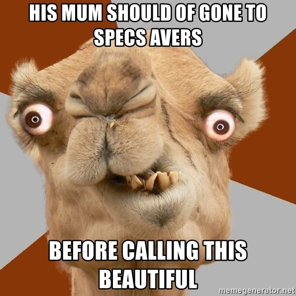 Crazy Camel lol - HIS MUM SHOULD OF GONE TO SPECS AVERS BEFORE CALLING THIS BEAUTIFUL