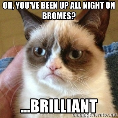 Grumpy Cat  - Oh, you've been up all night on bromes? ...brilliant